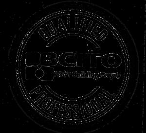 BCITO logo1 copy